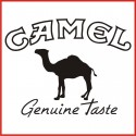 Stickers Adesivo Camel